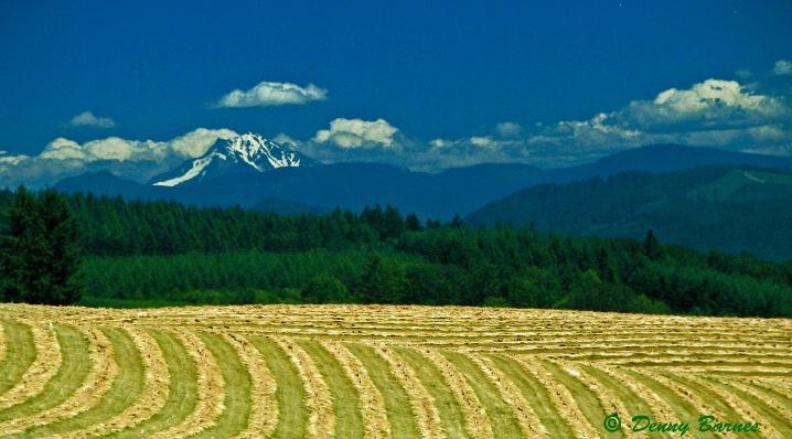 All in a Row, Farming-Oregon