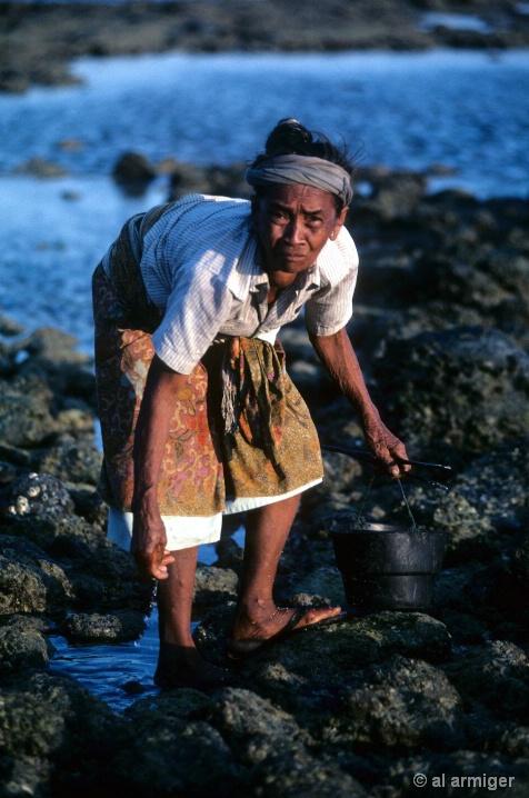 Lombok Islander-2000-6
