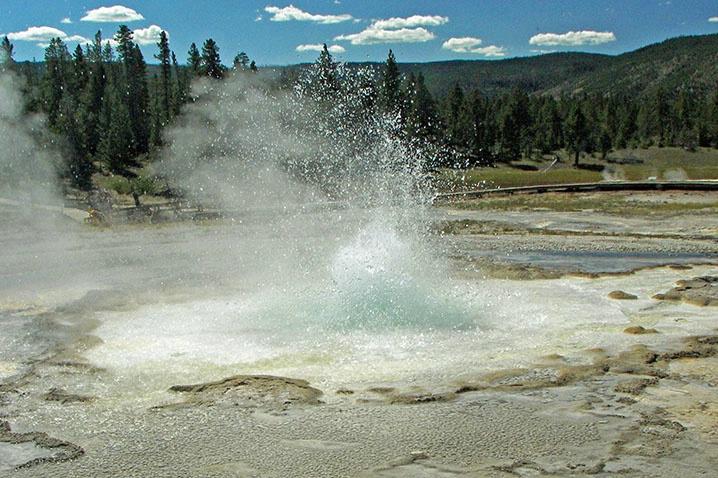 Sawmill Geyser, Yellowstone NP