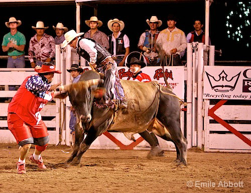 July 4th Rodeo Del Rio, Texas Style