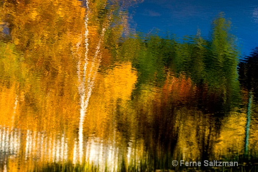 Monet Trees