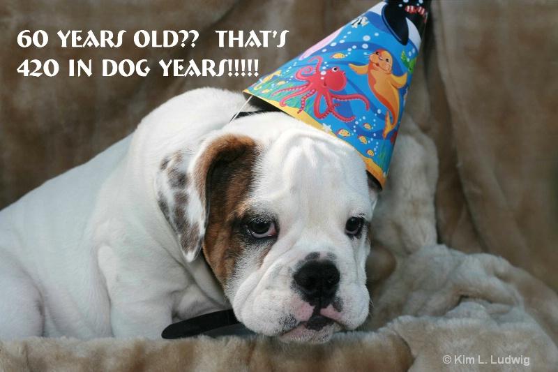 Birthdays Are Bull!