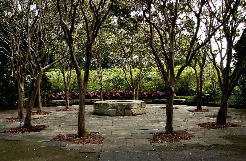 Circle of Trees