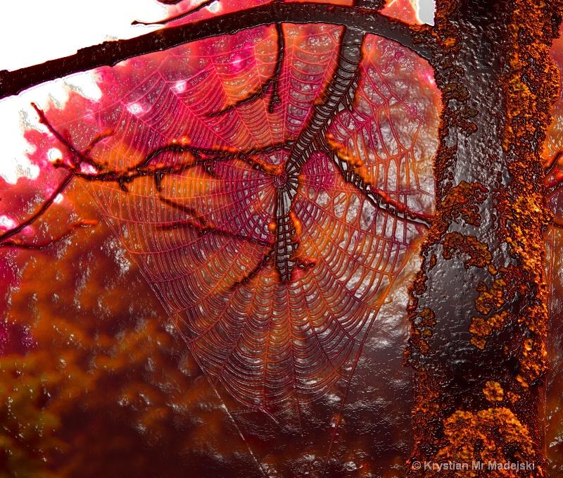 Spider's web sugar-icing