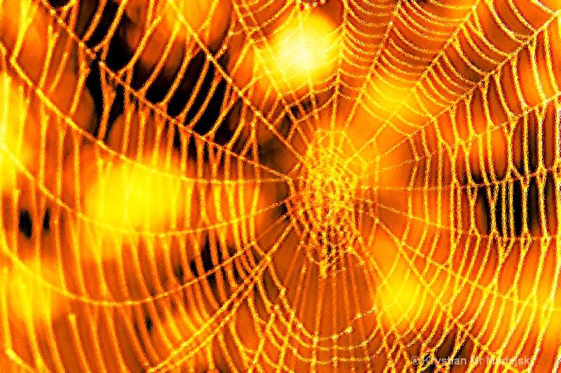 Spider's web blur glas