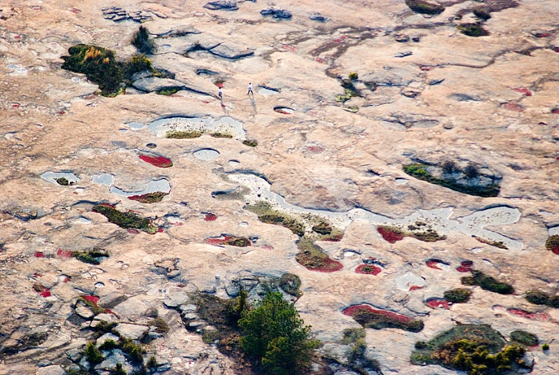 Aerial View of Davidson Arabia Mountain in Spring