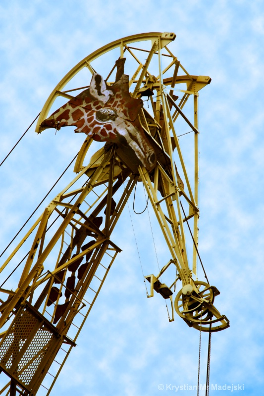 Giraffe's crane