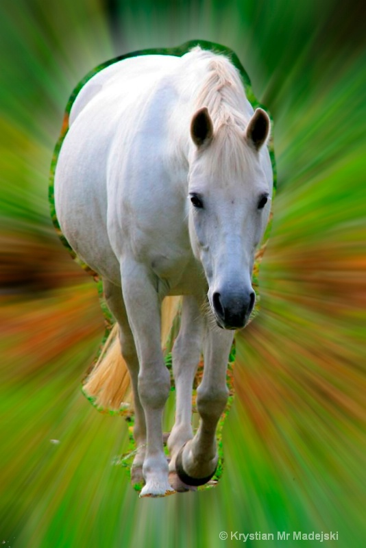 Moving horse
