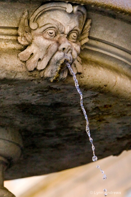 Fountain Face