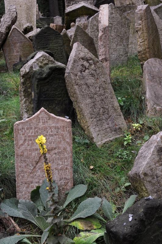 Fallen Martyrs