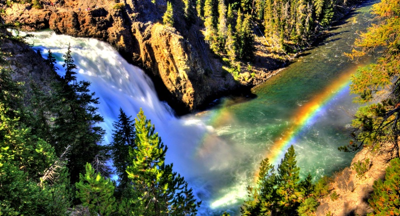 Above Yellowstone Falls