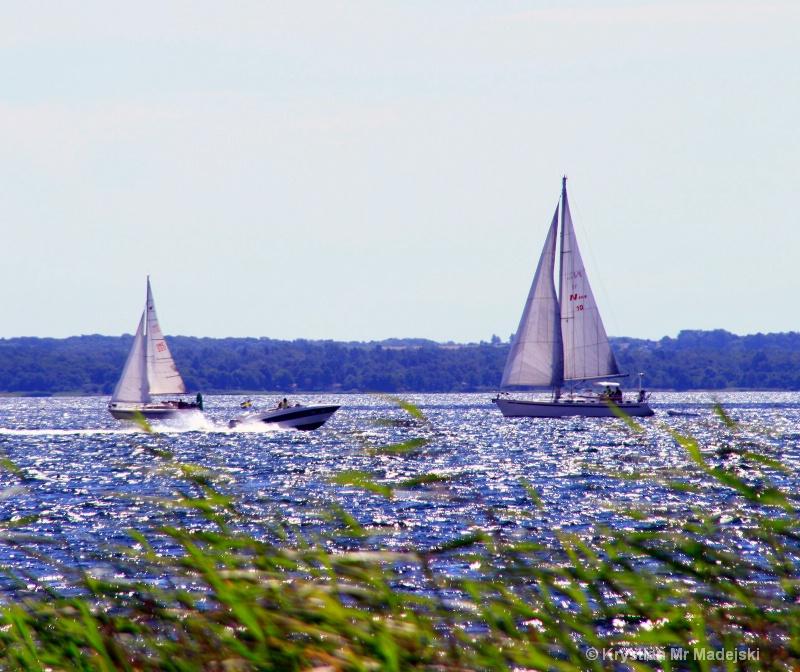 Motor and sailing boats