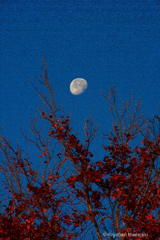 Tree and the moon in autumn CRAQUELURE