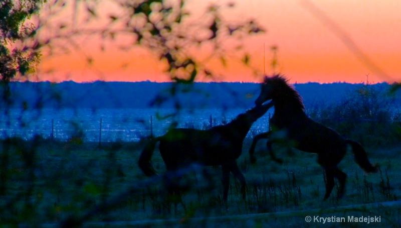 Love dance in the sunriselight ORYGIN 1