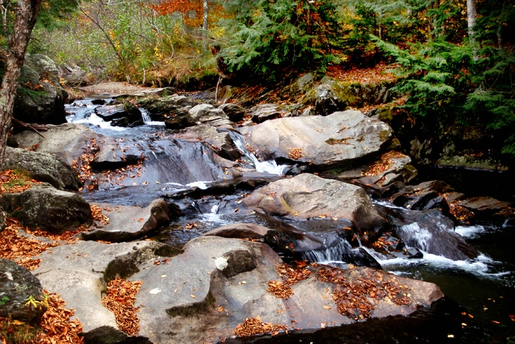 Falls, Rocks, and Leaves