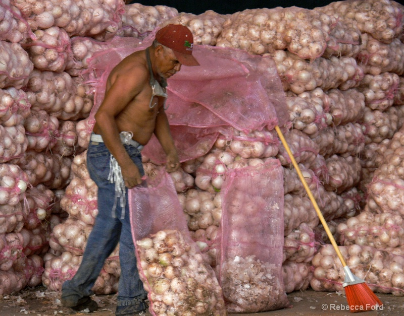 Bagging Onions