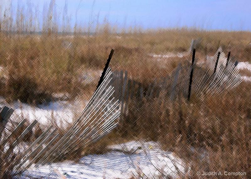 dune fence II