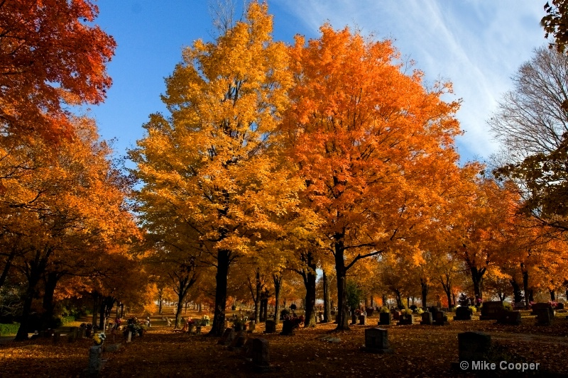 Maplewood Cemetery, Harrison, AR