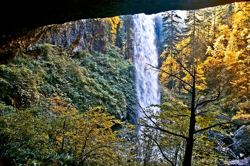 North Falls, Silver Falls State Park-OR