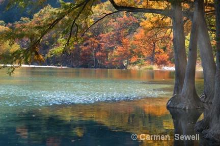 Frio River, Garner State  Park TX