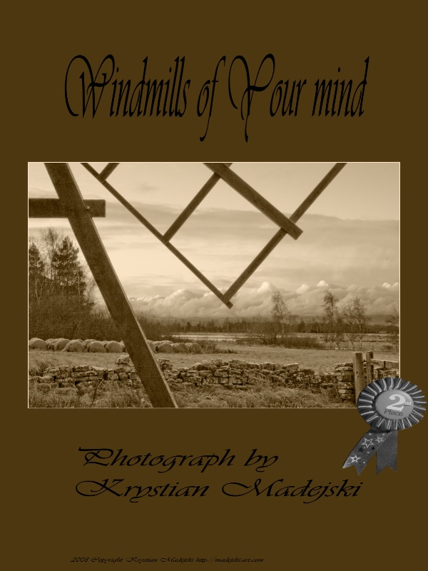 Windmills of Your mind - poster 2nd place