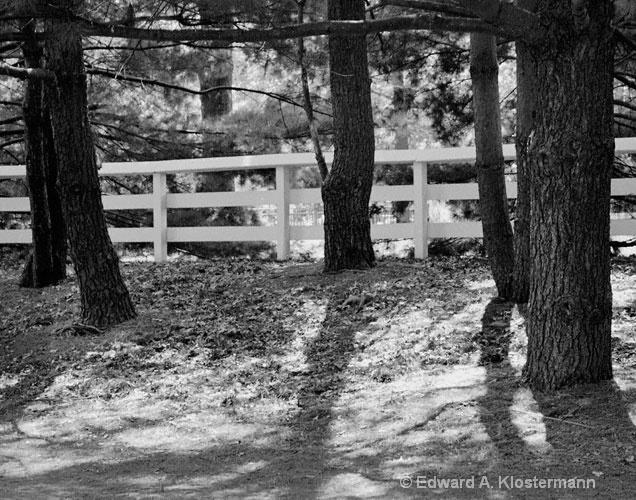 shady path Suson Park,St Louis, Co,Mo