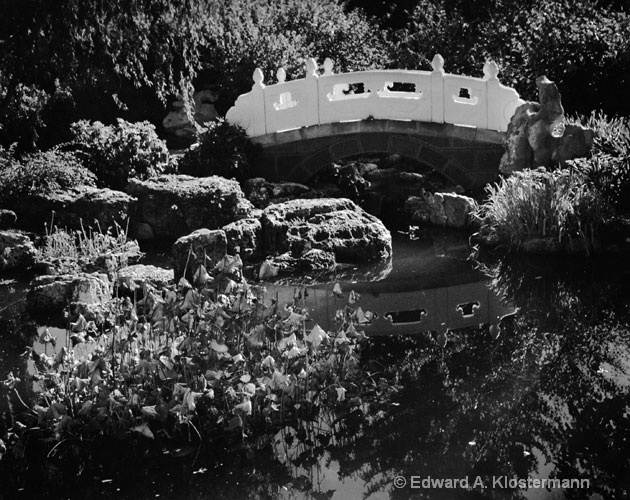 Chinese Garden bridge #2