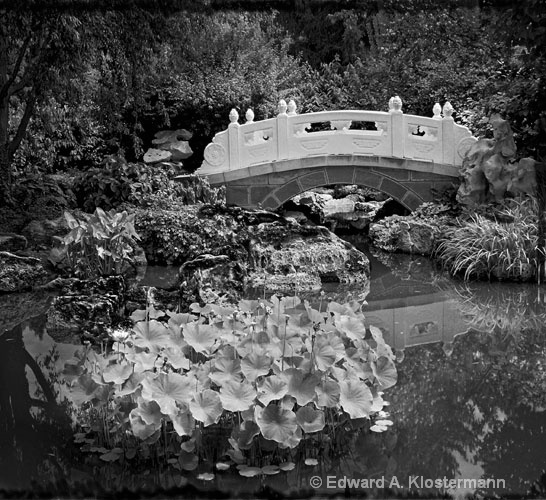 Chinese Garden bridge #1