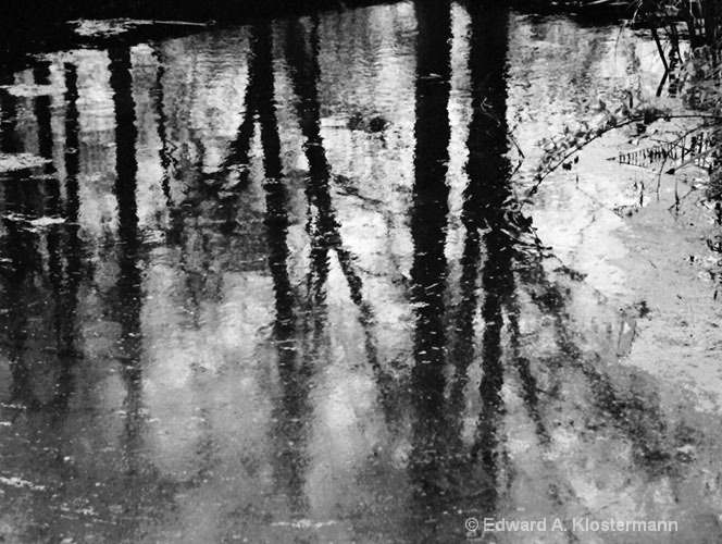river reflections no1