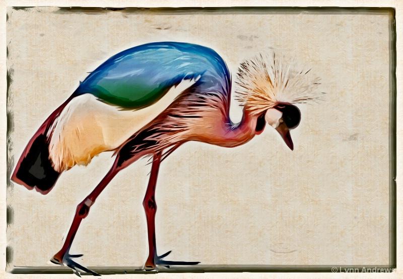 ZooBird