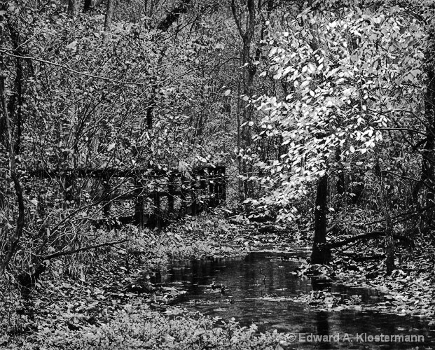 Spring runoff scenic