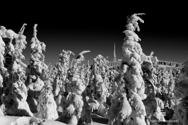 Radio station Skrzyczne and snowy forest BW