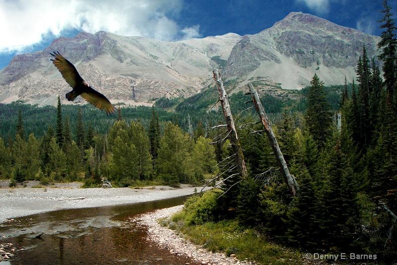 Two Medicine River, Glacier National Park