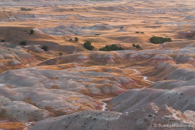 Badlands, SD Valley 1400