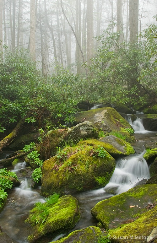 Roaring Fork Misty Stream 1970