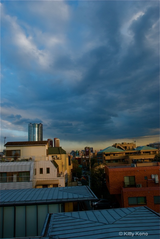 Cloudy Skies Over Tokyo - From Our Roof Top
