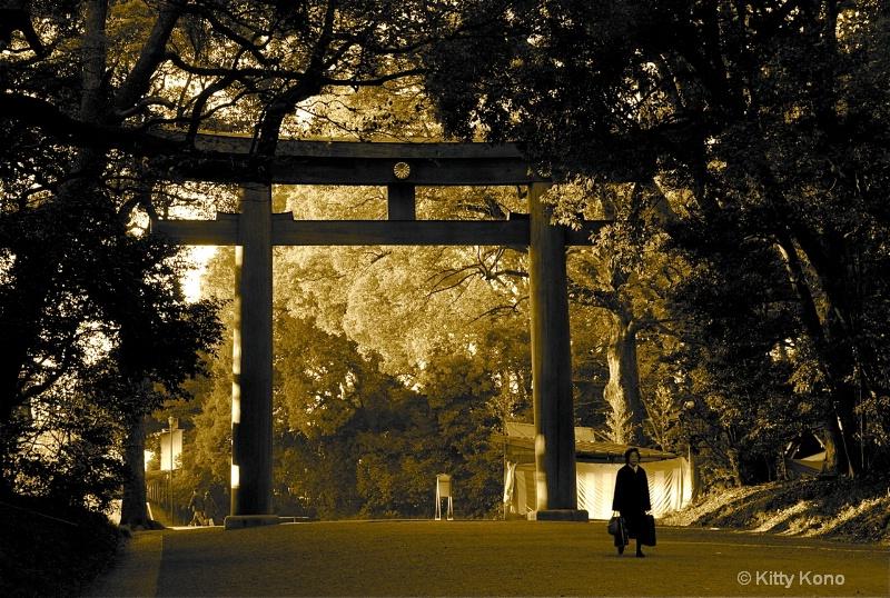 Entering Meiji Shrine
