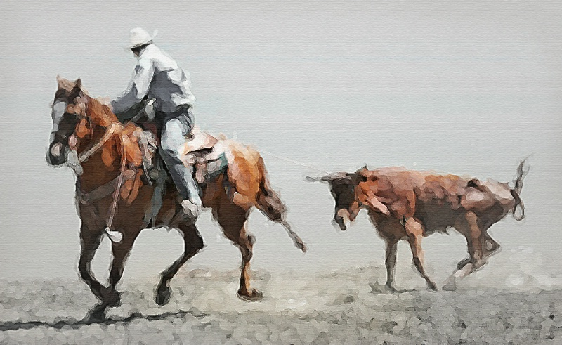 Rodeo Painting