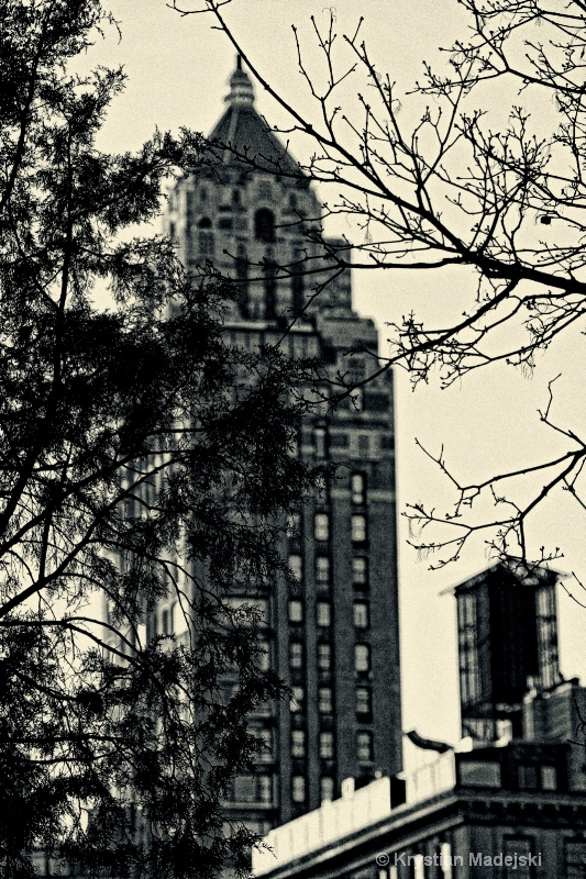 Building seen from Central Park NYC