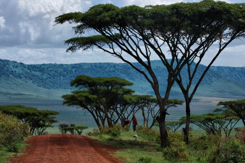 Land of the Maasai People
