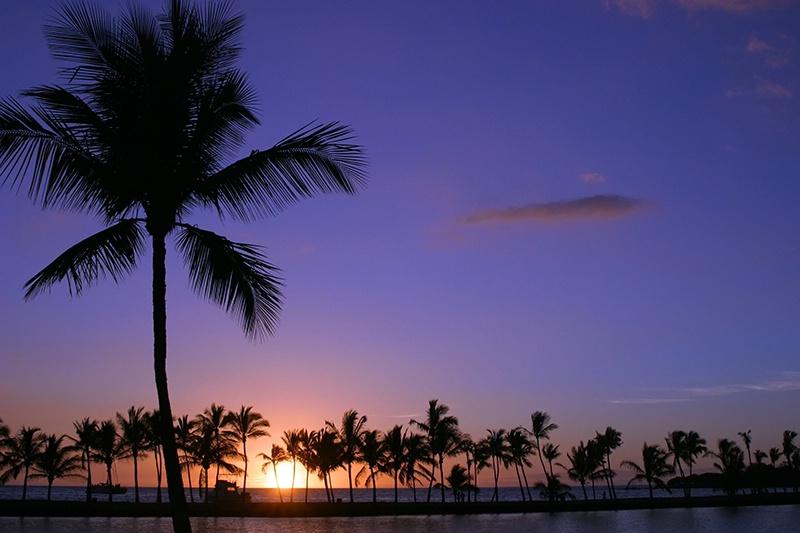 Sundown in Paradise