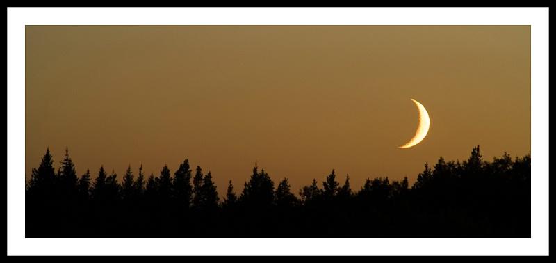 Cypress Hills Moon