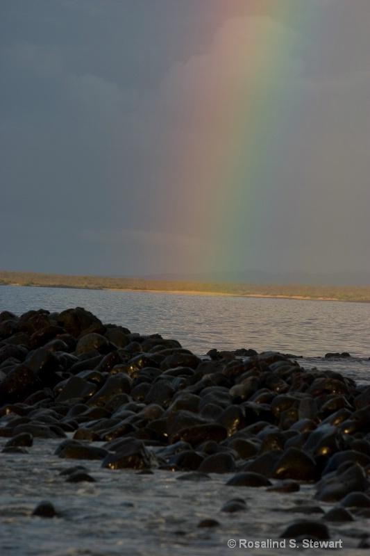 Galapagos Rainbow