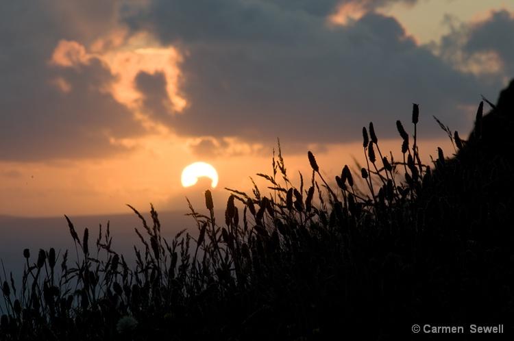 Sunset Cliffs of Moher