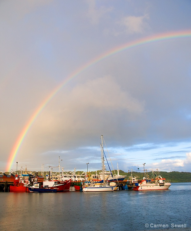 Rainbow over the Harbour