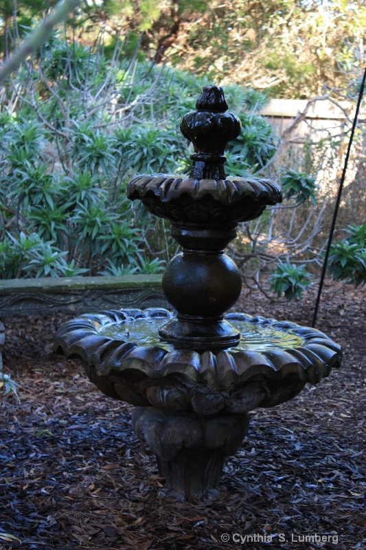 Front Yard Fountain