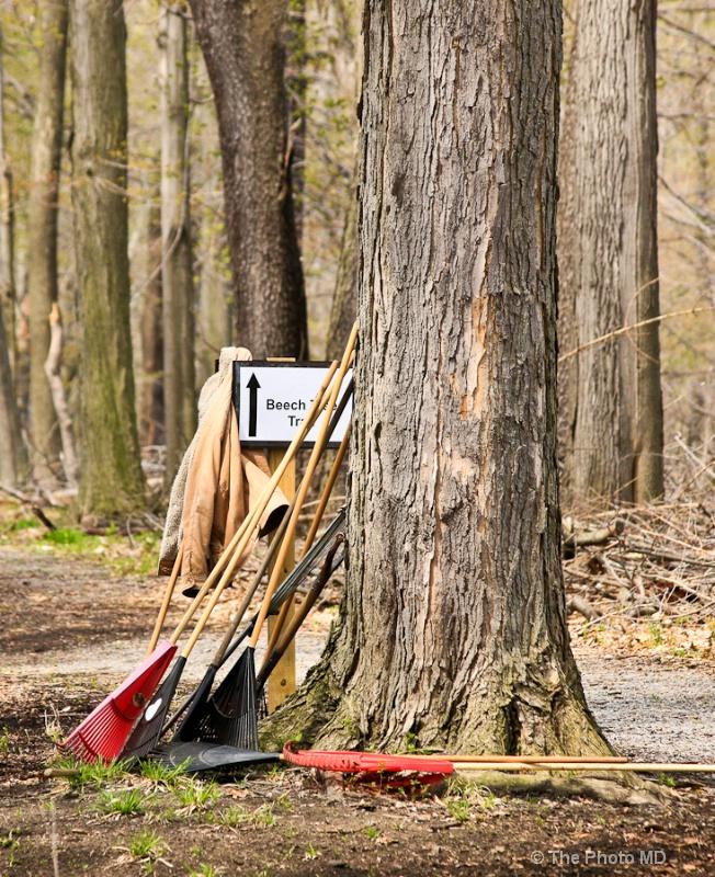 clean trail-16