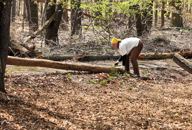 clean trail-53