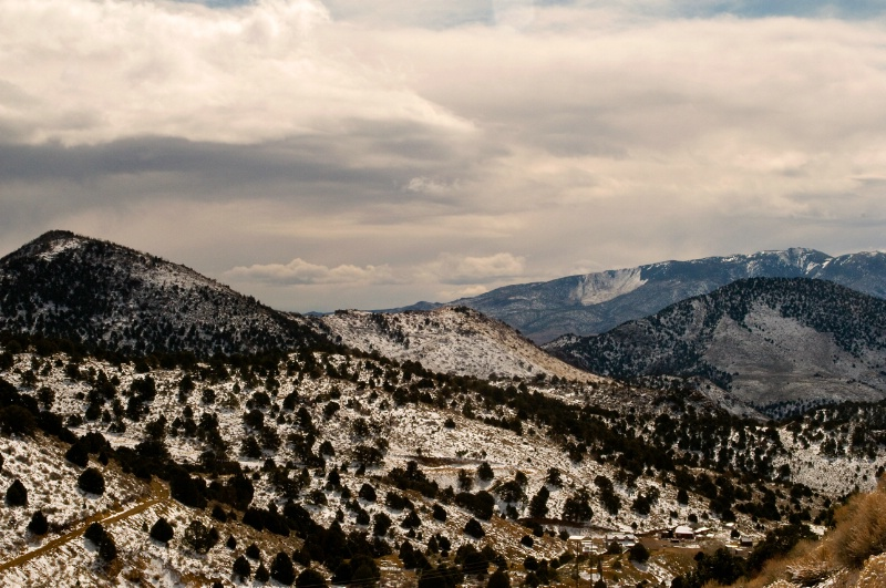 Reno Landscape