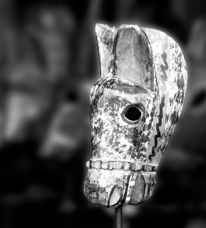 Horse Mask Cropped